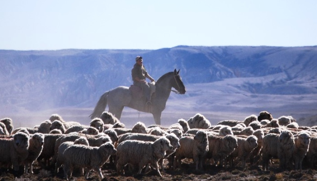 Groot droogte in Patagonië