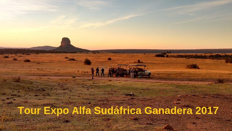 Tour Expo Alfa Sudáfrica Ganadera 2017