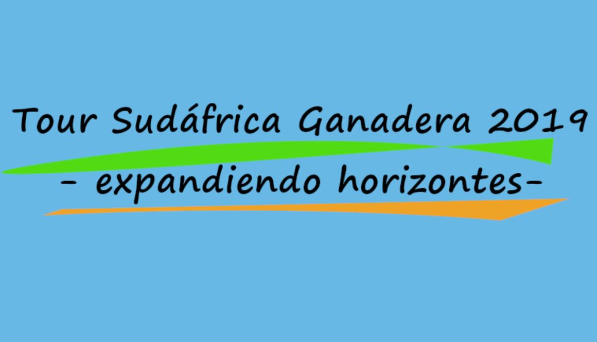 Logo 2019 6